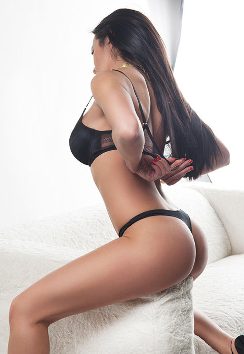 adult film booking agency